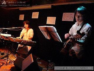 はるかぜ【Part.3】@ 秋田犬 (2008/11/16)