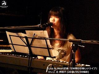 ひぃこ【Part.1】@ 秋田犬 (2010/05/09)